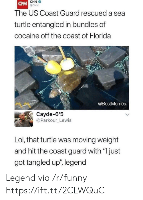 """cnn.com, Funny, and Lol: CNN  @CNN  The US Coast Guard rescued a sea  turtle entangled in bundles of  cocaine off the coast of Florida  @BestMemes  Cayde-6'5  @Parkour_Lewis  Lol, that turtle was moving weight  and hit the coast guard with """"just  got tangled up', legend Legend via /r/funny https://ift.tt/2CLWQuC"""
