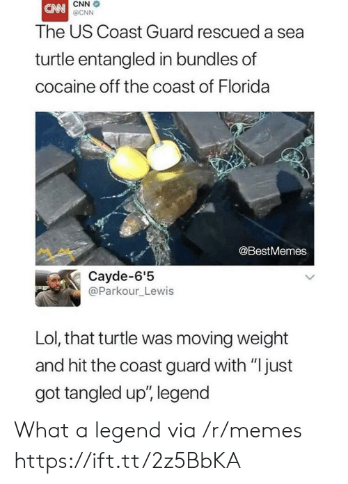 """cnn.com, Lol, and Memes: CNN  @CNN  The US Coast Guard rescued a sea  turtle entangled in bundles of  cocaine off the coast of Florida  @BestMemes  Cayde-6'5  @Parkour_Lewis  Lol, that turtle was moving weight  and hit the coast guard with """"just  got tangled up', legend What a legend via /r/memes https://ift.tt/2z5BbKA"""