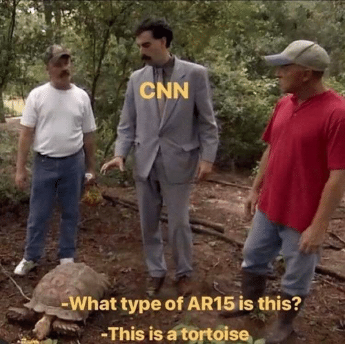 tortoise: CNN  -What type of AR15 is this?  -This is a tortoise