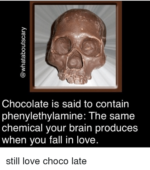 Fall, Love, and Memes: CO  3  Chocolate is said to contain  phenylethylamine: The same  chemical vour brain produces  chemical your brain produce:s  when you fall in love still love choco late