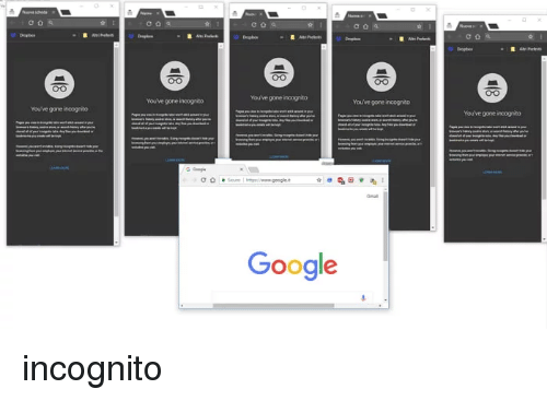 🦅 25+ Best Memes About Incognito Google | Incognito Google Memes
