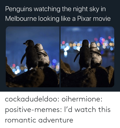memes tumblr: cockadudeldoo: oihermione:   positive-memes: I'd watch this romantic adventure