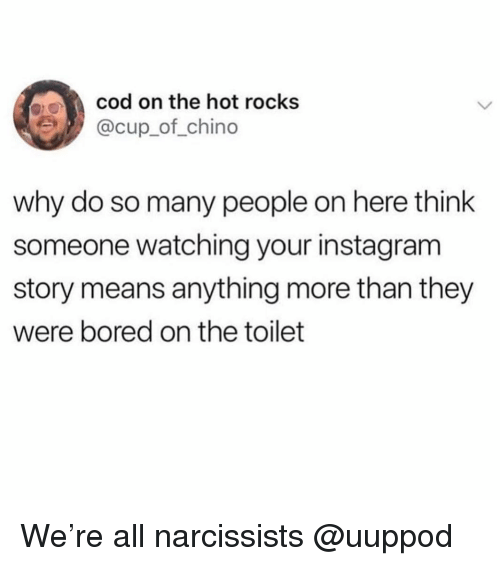 Bored, Instagram, and Girl Memes: cod on the hot rocks  @cup_of_chino  why do so many people on here think  someone watching your instagram  story means anything more than they  were bored on the toilet We're all narcissists @uuppod