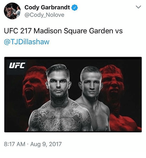 Memes, Ufc, and Madison Square Garden: Cody Garbrandt  @Cody_Nolove  UFC 217 Madison Square Garden vs  @TJDillashaw  UFC  8:17 AM Aug 9, 2017