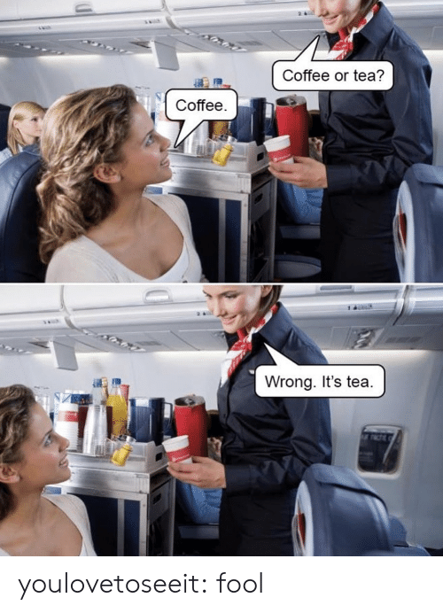 Target, Tumblr, and Blog: Coffee or tea?  Coffee.  Wrong. It's tea. youlovetoseeit:  fool