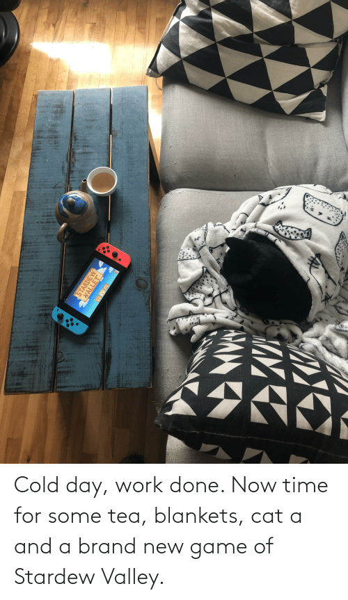 brand new: Cold day, work done. Now time for some tea, blankets, cat a and a brand new game of Stardew Valley.