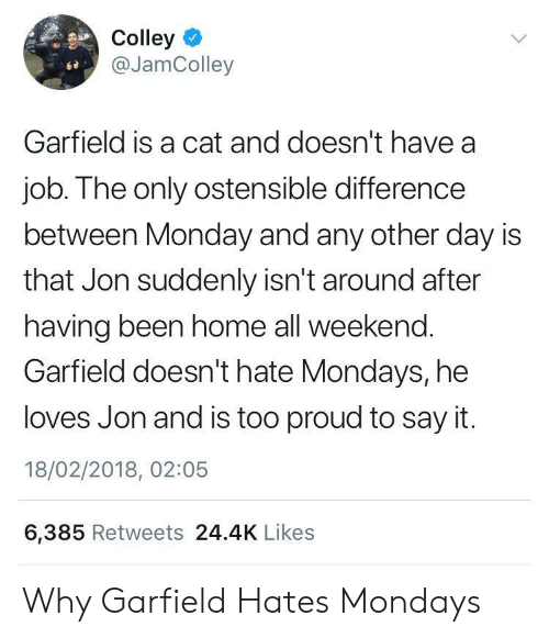 Mondays, Say It, and Home: Colley  @JamColley  Garfield is a cat and doesn't have a  job. The only ostensible difference  between Monday and any other day is  that Jon suddenly isn't around after  having been home all weekend.  Garfield doesn't hate Mondays, he  loves Jon and is too proud to say it.  18/02/2018, 02:05  6,385 Retweets 24.4K Likes Why Garfield Hates Mondays