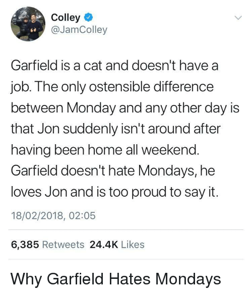 Mondays, Say It, and Home: Colley  @JamColley  ta  Garfield is a cat and doesn't have a  job. The only ostensible difference  between Monday and any other day is  that Jon suddenly isn't around after  having been home all weekend.  Garfield doesn't hate Mondays, he  loves Jon and is too proud to say it.  18/02/2018, 02:05  6,385 Retweets 24.4K Likes <p>Why Garfield Hates Mondays</p>