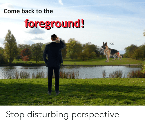 come back: Come back to the  foreground!  nop Stop disturbing perspective