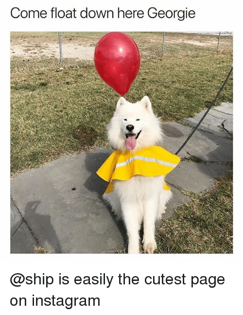 Instagram, Memes, and 🤖: Come float down here Georgie @ship is easily the cutest page on instagram