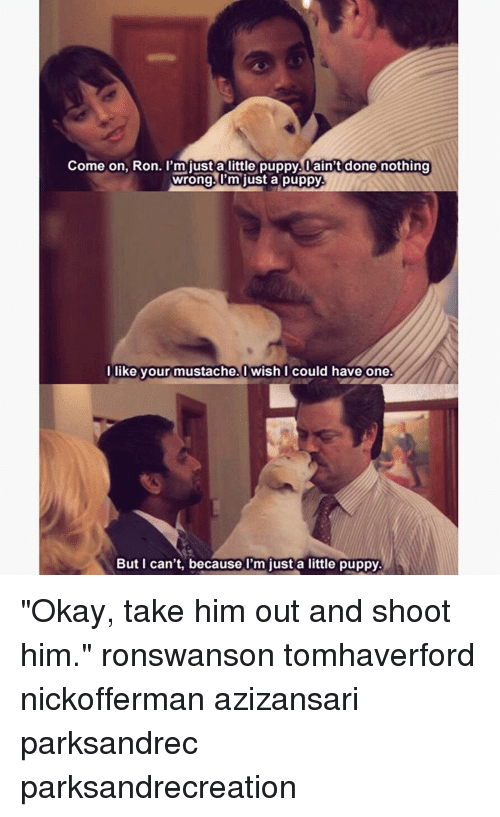 """Memes, Puppies, and Okay: Come on, Ron. I'm just a little puppy. ain't done nothing  wrong. I'm just a puppy  l like your mustache. Wish I could have one.  But can't, because just a little puppy. """"Okay, take him out and shoot him."""" ronswanson tomhaverford nickofferman azizansari parksandrec parksandrecreation"""