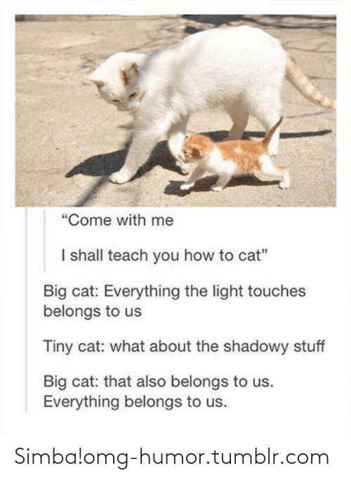 """Shadowy: """"Come with me  I shall teach you how to cat""""  Big cat: Everything the light touches  belongs to us  Tiny cat: what about the shadowy stuff  Big cat: that also belongs to us.  Everything belongs to us. Simba!omg-humor.tumblr.com"""