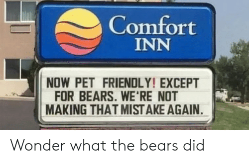 Bears, Wonder, and Pet: Comfort  INN  NOW PET FRIENDLY! EXCEPT  FOR BEARS. WE'RE NOT  MAKING THAT MIST AKE AGAIN Wonder what the bears did