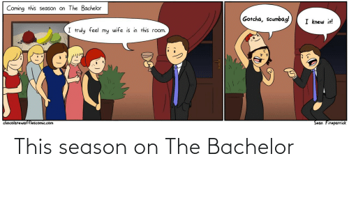 Knew It: Coming this season on The Bachelor  Gotcha, scumbag!  I knew it!  I truly feel my wife is in this room.  Sean Fitzpatrick  chocolatewafflescomic.com This season on The Bachelor