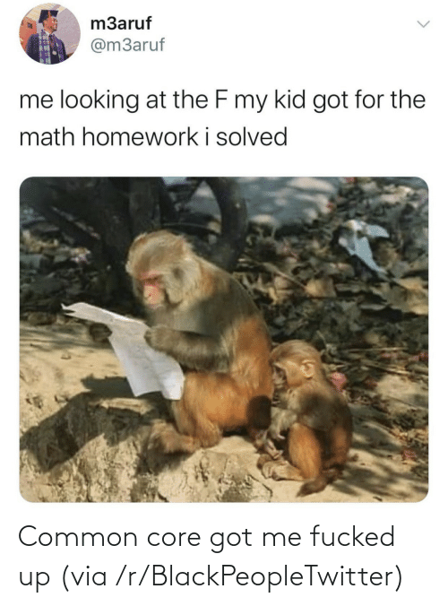 Got Me: Common core got me fucked up (via /r/BlackPeopleTwitter)