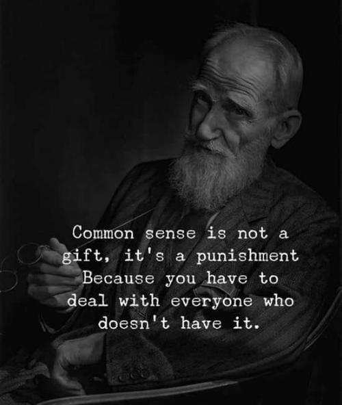 Common Sense: Common sense is not a  gift, it's a punishment  Because you have to  deal with everyone who  doesn't have it.