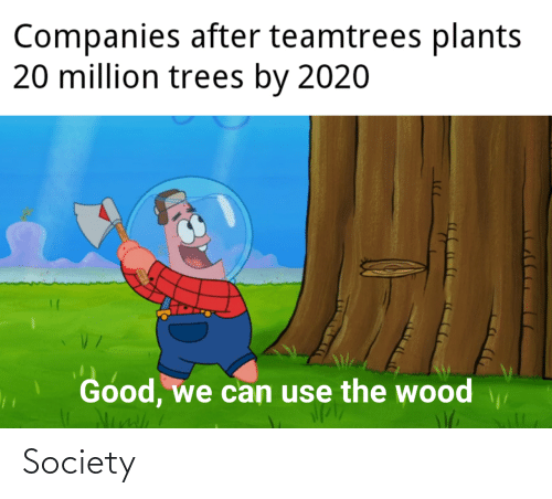 companies: Companies after teamtrees plants  20 million trees by 2020  Good, we can use the wood Society