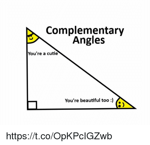 Beautiful, Memes, and 🤖: Complementary  Angles  You're a cutie  You're beautiful too)  8) https://t.co/OpKPcIGZwb