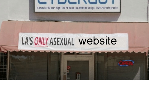Asexual, Computer, and Jewelry: Computer Repair, High-End PC Build-Up, Website Design, Jewelry Photography  LA'S ONLY ASEXUAL website  OPEN