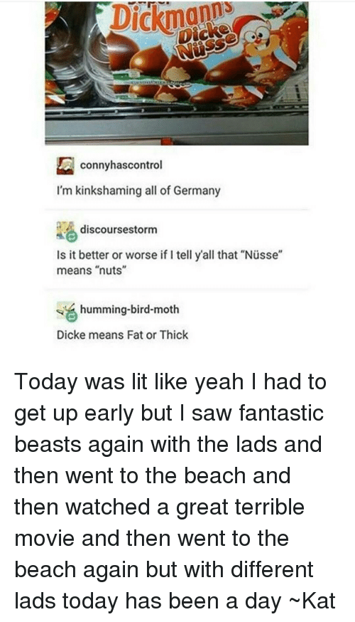 """Tumblr, Beach, and Birds: conny has control  I'm kinkshaming all of Germany  discourses torm  Is it better or worse if I tell y'all that """"Nusse""""  means """"nuts""""  humming-bird-moth  Dicke means Fat or Thick Today was lit like yeah I had to get up early but I saw fantastic beasts again with the lads and then went to the beach and then watched a great terrible movie and then went to the beach again but with different lads today has been a day ~Kat"""