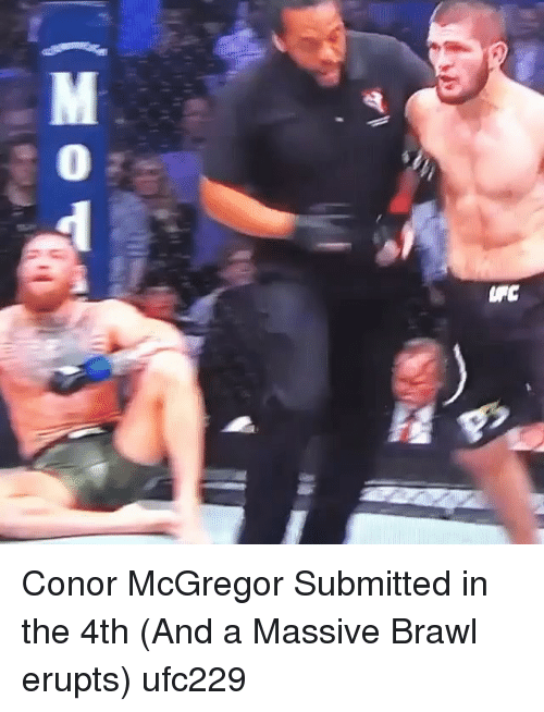 Conor McGregor, Memes, and 🤖: Conor McGregor Submitted in the 4th (And a Massive Brawl erupts) ufc229