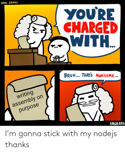 purpose: COOL CRIMES  YOU'RE  CHARGED  WITH..  BRUH... THATS AWESOME...  writing  assembly on  purpose  SRGRAFO I'm gonna stick with my nodejs thanks