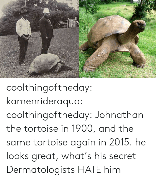 tortoise: coolthingoftheday:  kamenrideraqua:  coolthingoftheday:  Johnathan the tortoise in 1900, and the same tortoise again in 2015.  he looks great, what's his secret  Dermatologists HATE him