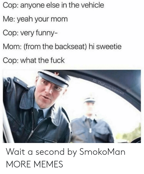 Dank, Funny, and Memes: Cop: anyone else in the vehicle  Me: yeah your mom  Cop: very funny-  Mom: (from the backseat) hi sweetie  Cop: what the fuck  rt Wait a second by SmokoMan MORE MEMES