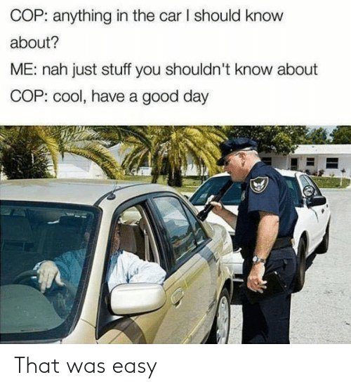 That Was Easy: COP: anything in the car I should know  about?  ME: nah just stuff you shouldn't know about  COP: cool, have a good day That was easy