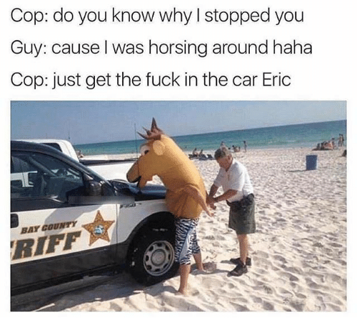Fuck, Dank Memes, and Haha: Cop: do you know why I stopped you  Guy: cause l was horsing around haha  Cop: just get the fuck in the car Eric  BAY COUNTY  RIFF