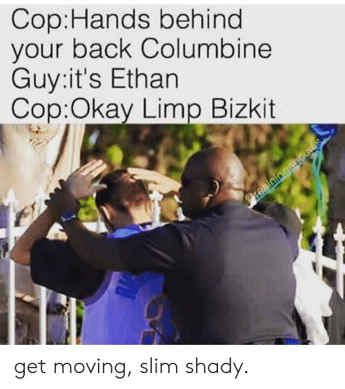 Slim Shady: Cop:Hands behind  your back Columbine  Guy:it's Ethan  Cop:Okay Limp Bizkit get moving, slim shady.