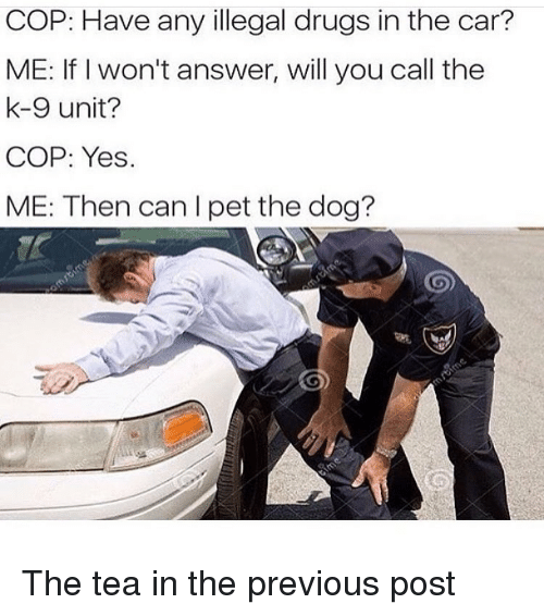 Drugs, Girl Memes, and Answer: COP: Have any illegal drugs in the car?  ME: If I won't answer, will you call the  k-9 unit?  COP: Yes.  ME: Then can I pet the dog? The tea in the previous post
