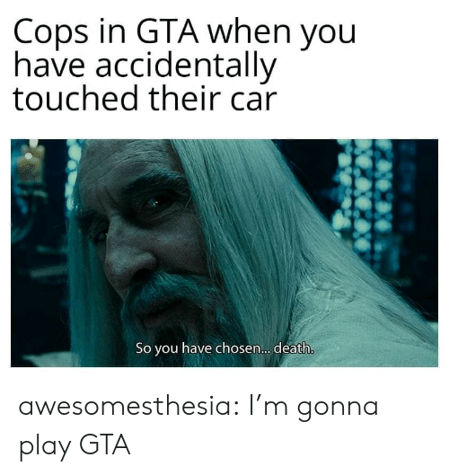 Tumblr, Blog, and Death: Cops in GTA when you  have accidentally  touched their car  So you have chosen... . death. awesomesthesia:  I'm gonna play GTA