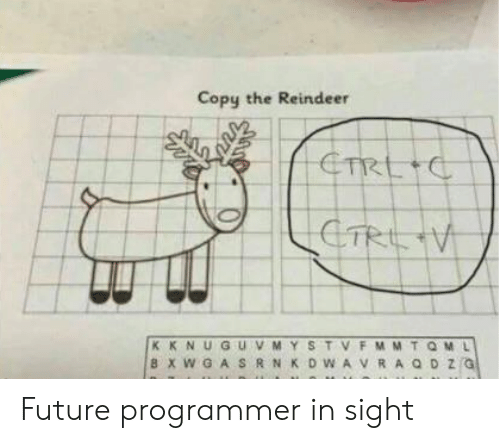 reindeer: Copy the Reindeer Future programmer in sight