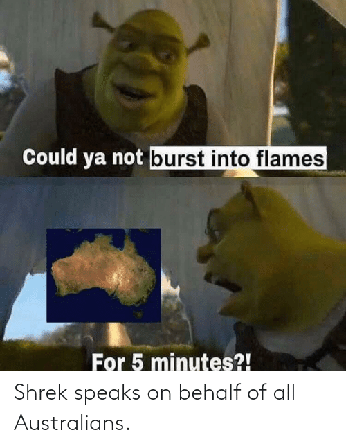 5 minutes: Could ya not burst into flames  For 5 minutes?! Shrek speaks on behalf of all Australians.