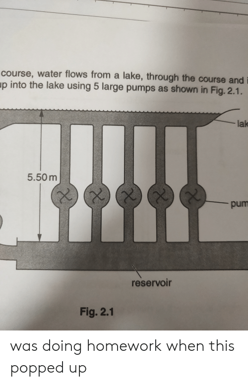 Water, Homework, and Accidental Racism: course, water flows from a lake, through the course and  up into the lake using 5 large pumps as shown in Fig. 2.1.  lak  5.50m  pum  reservoir  Fig. 2.1 was doing homework when this popped up