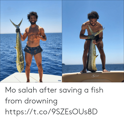 salah: Cout Mo salah after saving a fish from drowning https://t.co/9SZEsOUs8D