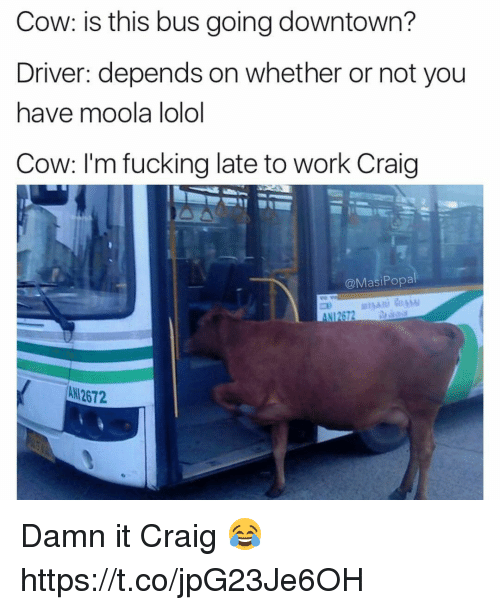 Popa: Cow: is this bus going downtown?  Driver: depends on whether or not you  have moola lolol  Cow: I'm fucking late to Work Craig  @Masi Popa  All 2672 Damn it Craig 😂 https://t.co/jpG23Je6OH