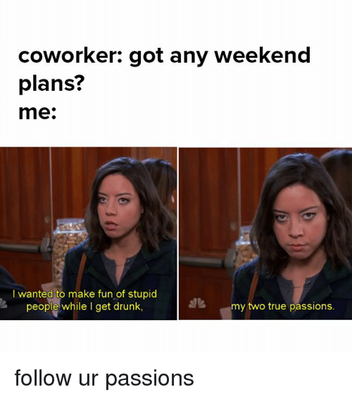 Weekend Plans: coworker: got any weekend  plans?  me.  I wanted to make fun of stupid  people while I get drunk,  my two true passions. follow ur passions
