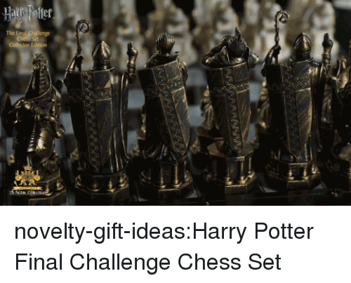 Harry Potter, Tumblr, and Blog: Cr  The novelty-gift-ideas:Harry Potter Final Challenge Chess Set