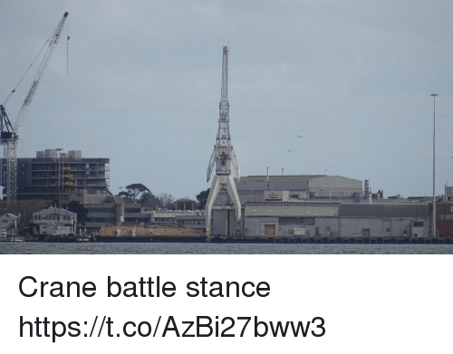 Faces-In-Things, Battle, and Stance: Crane battle stance https://t.co/AzBi27bww3