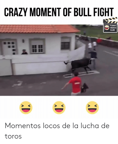 25 Best Memes About Fight Funny Fight Funny Memes