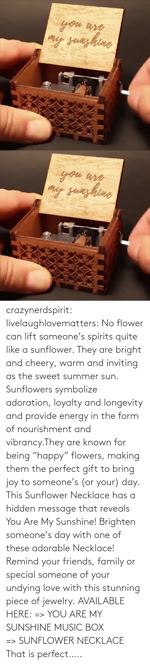 "Hidden Message: crazynerdspirit: livelaughlovematters:   No flower can lift someone's spirits quite like a sunflower. They are bright and cheery, warm and inviting as the sweet summer sun. Sunflowers symbolize adoration, loyalty and longevity and provide energy in the form of nourishment and vibrancy.They are known for being ""happy"" flowers, making them the perfect gift to bring joy to someone's (or your) day. This Sunflower Necklace has a hidden message that reveals You Are My Sunshine! Brighten someone's day with one of these adorable Necklace! Remind your friends, family or special someone of your undying love with this stunning piece of jewelry. AVAILABLE HERE: => YOU ARE MY SUNSHINE MUSIC BOX => SUNFLOWER NECKLACE    That is perfect….."