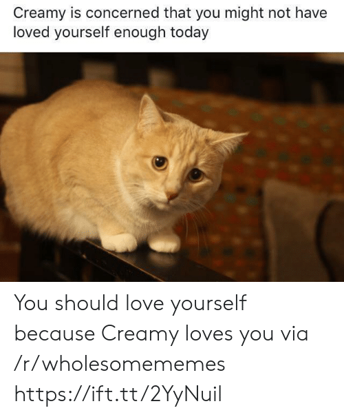 Love, Today, and Via: Creamy is concerned that you might not have  loved yourself enough today You should love yourself because Creamy loves you via /r/wholesomememes https://ift.tt/2YyNuil