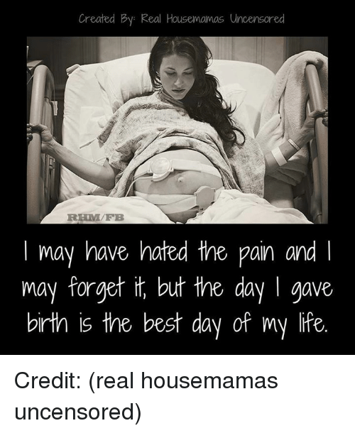Memes, 🤖, and Pan: Created By: Real Housemamas Uncensored  may have hated the pan and l  may forget but the day I gave  birth is the best day of my life Credit: (real housemamas uncensored)