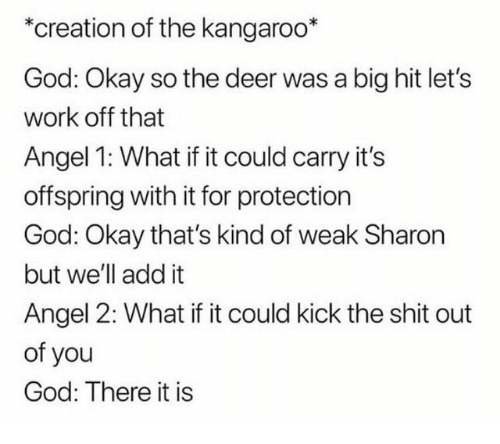 Deer, God, and Shit: *creation of the kangaroo*  God: Okay so the deer was a big hit let's  work off that  Angel 1: What if it could carry it's  offspring with it for protection  God: Okay that's kind of weak Sharon  but we'll add it  Angel 2: What if it could kick the shit out  of you  God: There it is