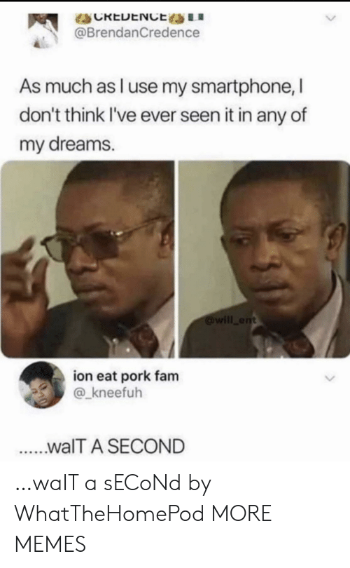 Dank, Fam, and Memes: CREDENCE LI  @BrendanCredence  As much as l use my smartphone, I  don't think I've ever seen it in any of  my dreams.  will ent  ion eat pork fam  @_kneefuh  ...walT A SECOND …waIT a sECoNd by WhatTheHomePod MORE MEMES