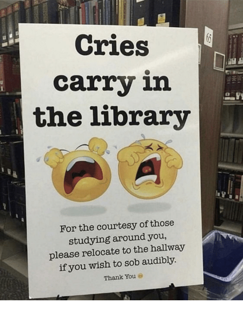 courtesy: Cries  carry in  the library  For the courtesy of those  studying around you,  please relocate to the hallway  if you wish to sob audibly  Thank You 6