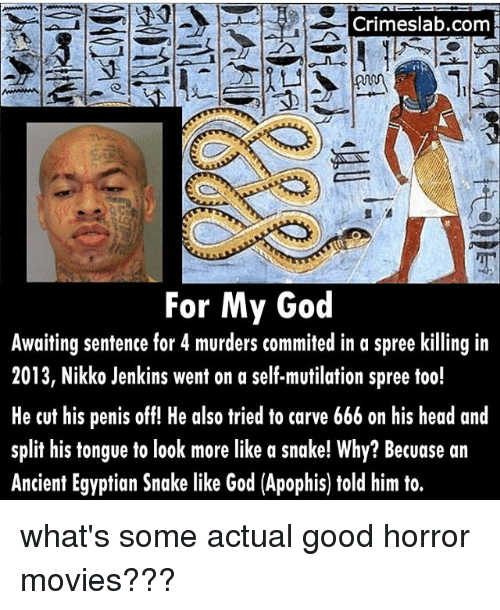 DeMarcus Cousins, God, and Head: Crimeslab.com  Al  For My God  Awaiting sentence for 4 murders commited in a spree killing in  2013, Nikko Jenkins went on a self-mutilation spree too!  He cut his penis off! He also tried to carve 666 on his head and  split his tongue to look more like a snake! Why? Becuase an  Ancient Egyptian Snake like God (Apophis) told him to. what's some actual good horror movies???