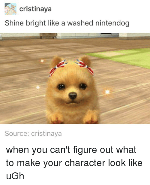 nintendogs: cristinaya  Shine bright like a washed nintendog  Source: cristinaya when you can't figure out what to make your character look like uGh